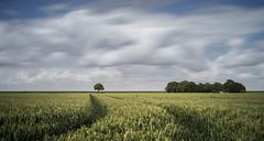 Pentax 40mm 2.8 Pancake lens... Benro Nd1000... 30 sec. f 16 (Jan Wedema) Tags: landscape photographer jeeeweee janwedema coenraadpolder groningen