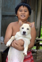 a boy and his dog (the foreign photographer - ฝรั่งถ่) Tags: jan162016nikon boy holding white dog khlong lat phrao portraits bangkhen bangkok thailand nikon d3200