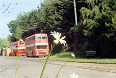 (Emmaalouise Smith) Tags: 35mm colour film analogue kodak emma emmaalouise smith foto diary transport vintage museum retro vehicle road red bus child family norfolk floral pattern decor summer sun light