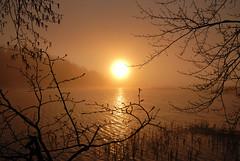 (Sameli) Tags: sun sunset fog foggy sea water landscape beautiful scene nature helsinki suomi finland