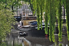 Wonen op het water / Living on the water (wilma HW61) Tags: woonboot woonark houseboat péniche takken framing branche branches feuilles fogliame laub gracht stadsgracht aak zwolle outdoor overijssel nederland niederlande netherlands nikond90 holland holanda paysbas paesibassi paísesbajos europa europe boot boat barca bateau ship schip