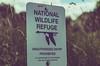 National Wildlife Refuge Sign (Tony Webster) Tags: bigstonenationalwildliferefuge fishandwildlifeservice minnesota minnesotariverheadwaterstrail nwr nationalwildliferefuge usdepartmentoftheinterior sign unauthorizedentryprohibited ortonville unitedstates us