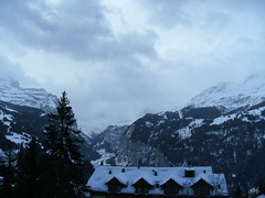 ... ...Guten MOrgen... ... (project:2501) Tags: wengen jungfrauregion suisse switzerland snow ski travel hotel hotelbelvédère hotelroom artnouveau 1912 view aroomwithaview balcony theviewfromhere morning morninglight bluelight blue bluebleu bleu sunrise inthemountains mountains mountain rock pinetrees alpinefauna stellifluh2232m mürren1634m jungfrau4158m breithorn3782m tschingelhorn3557m gspaltenhorn3437m