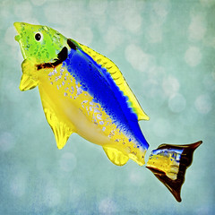 broken (1crzqbn) Tags: broken hmm glass bokeh macromondays macro fish
