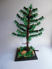 Larch tree (Damian Bader) Tags: larch tree