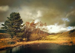 Kelly Hall Tarn, Nr. Torver, Cumbria (Grangefirth) Tags: snapseed cumbria painterly hipstamatic iphone6s jollyrainboflash grangefirth jimmylens phototoaster