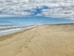 "a single set of footprints (""One who sits by the fire"") Tags: sandy sandybeach footprints atlanticocean eastcoast"