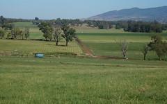 Limestone Park, 50 Kurrajong Place, Tamworth NSW