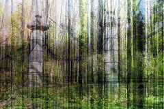 ,,,,,,, (roberke) Tags: photomontage photoshop textures textuur layers lagen creation creative creatief surreal bos bomen trees poort gate green groen