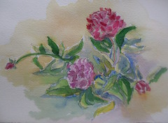Peonies on a Hot Day (SandraNestle) Tags: sandranestle watercolorart art pleinair sketchbookart drawings summer fun fleurs flowers vignette