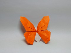 Butterfly by Kota Imai (Zephyr Liu) Tags: origami paper kami butterfly kota imai mathematical