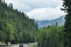 Beautiful Views Driving Through the Pass (Carolyn H. - Travel & Nature Photographer) Tags: cascademountains cascades pass mountains washington road street forested forest trees hill landscape interstate i90 outdoors outdoor nikon d5500