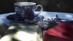 DSC02805-002 (suzyhazelwood) Tags: books reading poetry poems flowers floral blue tea teacup food drink summer sony a6000 creativecommons
