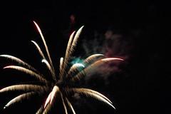 2017-07-Independence Day-DM3_5107 (CatapultCowboy) Tags: fireworks independanceday ohio patriotic nikon nikond500 wife beautiful