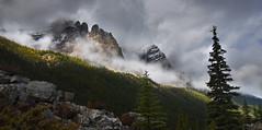 Skyward (Rick Elkins) Tags: mountain peak pine tree sky mist clouds fog stone rock landscape canada canadianrockies rockies alberta banffnationalpark