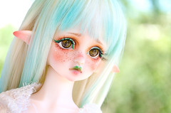 Ai'enei (Alix Real) Tags: doll dolls muñeca bjd abjd abjds bjds asian ball jointed super dollfie mako makoeyes eyes msd dim mind flowne elf leeke leekeworld wi wig