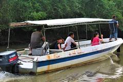 Nanamun Trip Kota Belud Sabah (MitchellC1014) Tags: nanamun kotabelud tourism firefly monkey rivercruise sunset mountkinabalu sabah canoneos newbie rampayan tourist korean