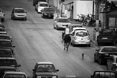 IMG_1171 (christinehag) Tags: rider καβαλάρησ cavalier chevalier knight monochrome blackandwhite ασπρόμαυρο μονόχρωμο people