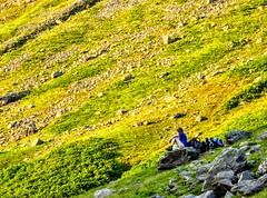 COAST TO COAST WALK 2015 (pajacksonartist) Tags: wainwright wainwrights coasttocoast coast walk walker hiker hike lake district national park lakedistrict lakeland landscape cumbria
