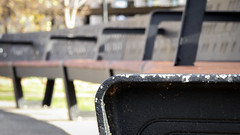 Curved Bench (Theen ...) Tags: armrest bright cast chipped city grey hobart iron lumix slats square sunshine theen woodenmetal