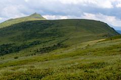 Polonina Bukovska (Zbynek Stoklasa) Tags: ukraine mountain zakarpattia carpathian