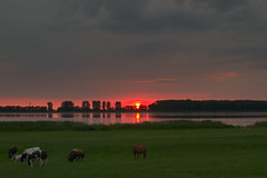 Sunset 2 (hjvanleeuwen) Tags: sunset veluwe elburg netherlands landscape sundown