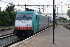 NS 2803 @ Dordrecht (ianjpoole) Tags: nmbs sncb nederlandse spoorwagen class 186 2803 working train ic9252 amsterdam centraal bruxelles midi