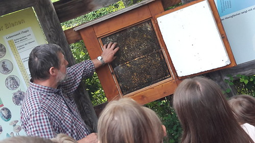 Der Bienenvater Karl erzählt über das Leben der Bienen