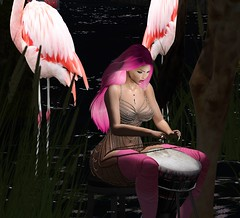 Gathering of the Flamingos (dulcetkitty) Tags: little bones hair addams africa drumming