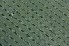 Nearly Perfect Lines (Aerial Photography) Tags: by keh ndb 17062013 5d343397 ackerbau diagonale einsamkeit feld feldkapelle fotoklausleidorfwwwleidorfde getreidefeld grün landschaft landwirtschaft linien luftaufnahme luftbild spuren stimmung thaldorf weizen aerial agriculture cornfield diagonal field green landscape lines loneliness mood outdoor traces tracks verde wheat