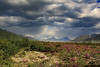 Storm over the Delta River Valley (blkwolf1017) Tags: clouds sky storm flowers scenic alaska delta river canon50d sigma2470mm