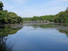 Photo of IMG_8139 Eight-arch Bridge