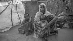 Saynaba Sahene (UNICEF Ethiopia) Tags: somali ethiopia idp internallydisplacedpeople drought pastoralist