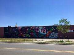 186/365/6 (f l a m i n g o) Tags: monday 2017 26th june jcrs building mural colorado lakewood denver 365days project365