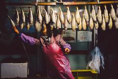 (wenninparis) Tags: seoul korea market marché poissons fish streetphotography candid snapshot wenninparis rx100 sony