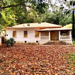 old house... (Marcilia Bevitori) Tags: marciliabevitori minasgerais brasilemimagens ngc leaves autumn architecture arquitetura house oldhouse
