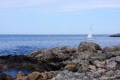 (elalex2009) Tags: oceanview boat marbleheadma marblehead