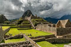 Machu Picchu -_DSC0602