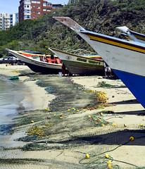 REDES PARA PESCA - FISHING NETWORKS (alfonsomejiacampos. PLEASE READ MY PROFILE) Tags: redes pesca reparar coser puertodevaldez porlamar islademargarita venezuela
