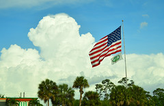 Huge flag over Florida (radargeek) Tags: driving fromtheroad fl florida fortmyers american flag cloud sky perkins palmtree