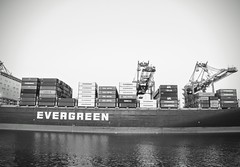 EVERGREEN (forty-onecrush) Tags: ca california portoflosangeles evergreen americasport port sanpedro