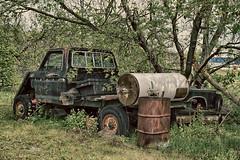 In The Shade (gabi-h) Tags: oldtruck happytruckthursday warkworth tree shade spring oilbarrel rust wheels vintage gabih derelict vehicle windows barrel hotwatertank junk garbage