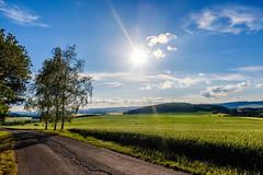 Sunlit field (Petr Horak) Tags: wclx100 28mm x100f birch czechia bluesky blueskies countryside bohemia sun farmland agriculture fuji sky color landscape hill clouds field novédvory středočeskýkraj cze