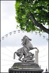 Centromotor (fabian.kron) Tags: cavalo horse rodagigante paris champs elysees