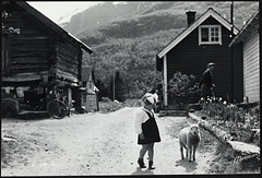 G-240-6. Sommermotiv : liten jente med lam (National Library of Norway) Tags: nasjonalbiblioteket nationallibraryofnorway postkort postcards barn lam lambs sheep sauer jenter girls sommer summer gårdstun gårdsmotiv normannskunstforlag
