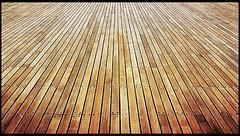 Acacia Hardwood Floors in Cedar Park Texas | 1-877-784-9785 | Flooring Companies near me (flooringshops) Tags: acacia hardwood floors cedar park texas | 18777849785 flooring companies near me