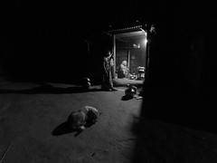 A village kitchen (سلطان محمود) Tags: manikganj dhaka distric bangladesh xiaomi yi action woman kitchen dog making tea night latenight light blackwhite
