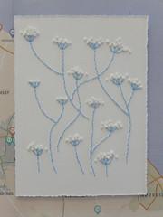 (Landanna) Tags: cowparsley fluitekruid weed embroidery embroideryonpaper broderi broderipåpapir borduren bordurenoppapier frenchknots backstitch handmade handgemaakt paperart paperwork wildflower