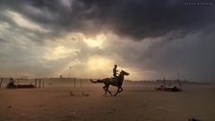 Gusty marina (kevinkishore) Tags: horse horseman storm gusty marina beach sand chennai sunset clouds