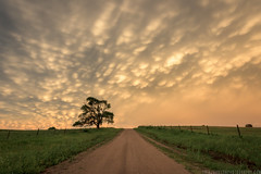 Lost in Nebraska (Erik Johnson Photography) Tags: red nebraska mammatus cloud cloudporn sunset sky road lone tree weather midwest goldenhour storm flyover country national geographic natgeo creative stormchase stormchasing noaa channel stock image print purchase buy license
